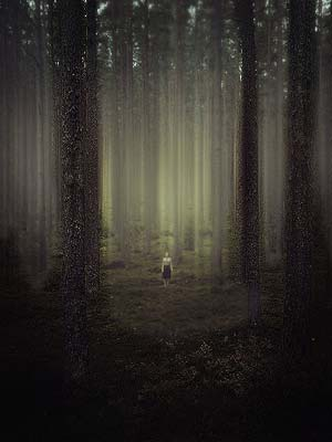 42a_lost_in_the_dark_forest